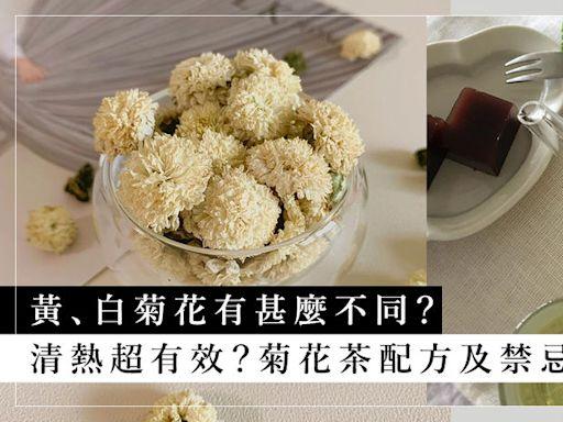 黃白菊花功效有甚麼不同?菊花茶要怎樣沖、焗茶配方及禁忌 | HARPER'S BAZAAR HK