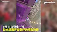 美式足球賽驚見小貓從高處看台摔落 球迷用國旗神救援