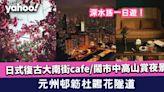 【元州邨花隧道】元州邨簕杜鵑花廊/大南街文青Cafe/嘉頓山賞鬧市夜景
