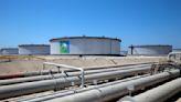 Saudi Arabia, World's Biggest Oil Exporter, to Unveil Green Goals