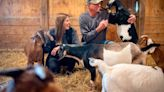 Centre County farm embraces agritourism with goat yoga, farm stays & more. Here's what's next
