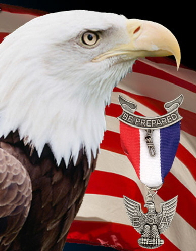 national eagle scout association outstanding eagle scout award