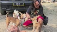 Indonesian volunteers shelter pets of COVID patients