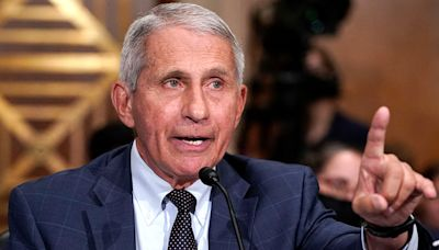 Rep. Nancy Mace demands Fauci answer for 'cruel, taxpayer-funded experiments on puppies'