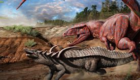 Emma Schachner: How Did Dinosaur's Lungs Help Them Dominate The Earth For So Long?