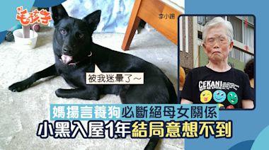 唐狗|兩老曾表示養狗就與女兒斷絕關係 黑汪入屋1年結局現驚喜