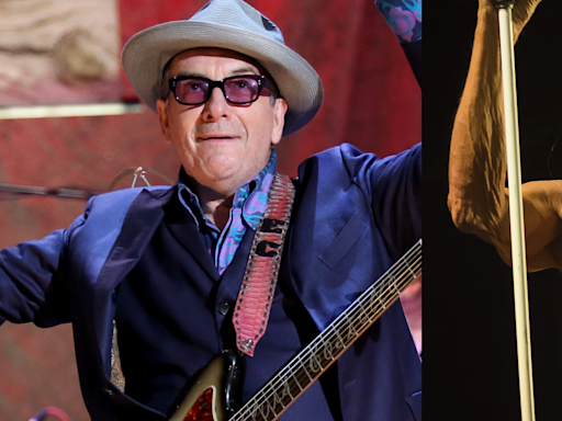 "Elvis Costello and Iggy Pop Share New Song ""No Flag (en Français)"": Listen"
