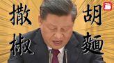 中國無窮人|習近平睇稿停3秒皺眉講「撒胡椒麵」 網民:佢唔知自己講咩 | 蘋果日報