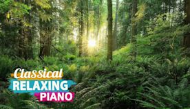 Deep Relax Classical Music: Romantic Music, Beautiful Piano Music, Sleep Music, Stress Relief
