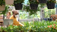 Local garden centers are seeing a jump in sales as people go from cooking to planting
