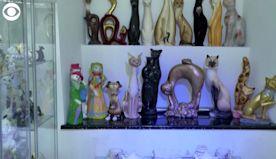 WEB EXTRA: Cat Museum In Poland