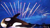 【打卡景點】台南發現「鯨」喜,亮晶鯨泳渡入港!