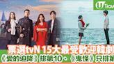 票選tvN歷年15大最受歡迎韓劇《愛的迫降》僅排第10位、《鬼怪》只排第3   U Travel 旅遊資訊網站