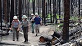 Rocky Mountain National Park visitors can get rare look into ire of East Troublesome Fire