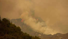 Wildfires merge before reaching edge of Sequoia National Park