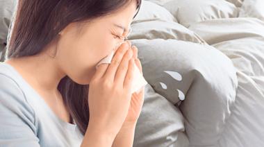 揮別晨間噴嚏!「高熱、高濕、吹冷氣」是鼻過敏三大禍首 | 蕃新聞