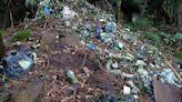 阿里山眠月線清出400公斤垃圾!滿山寶特瓶飲料罐全由志工背下山、大嘆:還沒清完