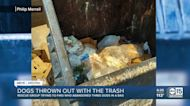 Valley man finds dogs in trash by Walmart