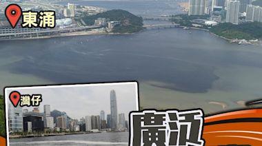 紅潮遍布維港東涌荃灣西 學者指規模大較罕見