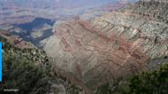 Unexpected remains found at Grand Canyon during search for body