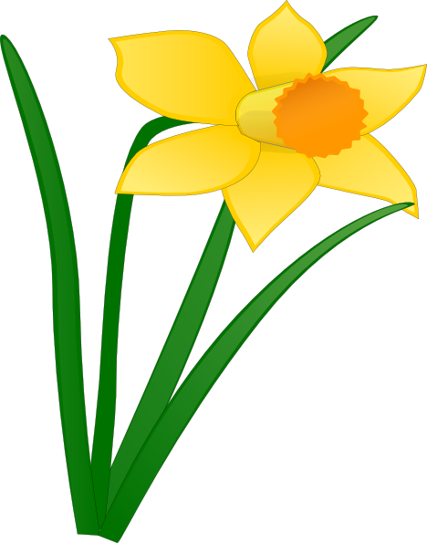 Daffodil 1 Clip Art at Clker.com - vector clip art online, royalty ...