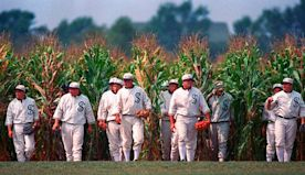 'Field of Dreams': Fathers & sons, phantoms and phenoms