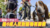 【員工褔利】為挽留人才 英企提供員工有薪假飼養寵物 - 香港經濟日報 - 即時新聞頻道 - 商業