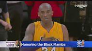 Honoring The Black Mamba