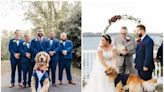 A couple's dog served as ring bearer at their wedding, complete with a tuxedo that matched the groomsmen