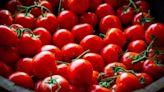 I cibi antiossidanti da mangiare in estate contro gonfiori e invecchiamento