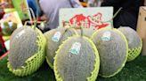 「極光」哈密瓜商標被盜用 縣府護農民採法律行動