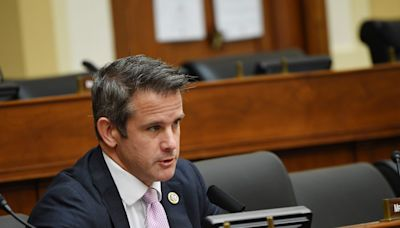 Adam Kinzinger calls GOP demands for him to be punished 'petty' and says he'll 'defend democracy' no matter what