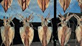 澎湖海味四季!當令美食 交織成難忘風景 - 財訊雙週刊