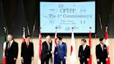 好消息!台灣申請入CPTPP 最易受中方壓力2國無投票權 | 全球 | NOWnews今日新聞