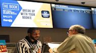 Sports betting industry expecting 'huge explosion' in growth over next decade: Investor