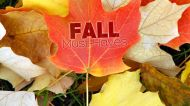 Must-Haves to Be Happy and Healthy This Fall