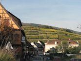 Alsace Grand Cru AOC