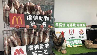 動保團體批虐待動物居冠 麥當勞、摩斯回應了