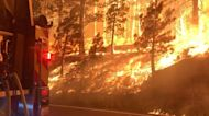 Tamarack Fire Grows to Over 18,000 Acres in California