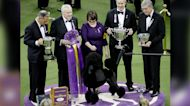 14th annual Westminster Kennel Club Dog Show happening this weekend