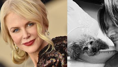 Fans Cannot Handle Nicole Kidman's Latest Instagram of Her Husband Keith Urban