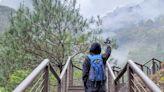 台中熱門登山步道~八仙山國家森林遊樂區,賞櫻、觀溪、泡腳超愜意