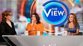 """""""The View"""" Hosts Test Positive for COVID Before Kamala Harris Intv - E! Online"""