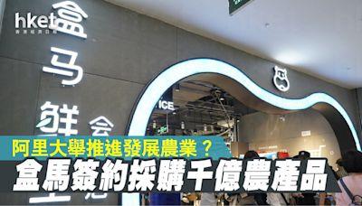 【阿里巴巴9988】阿里大舉推進發展農業? 盒馬簽約採購千億元農產品 - 香港經濟日報 - 即時新聞頻道 - 即市財經 - 股市