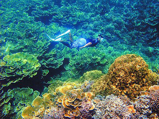【獨家/旅遊泡泡】旅行社準備好了! 飛帛琉5天團費8萬含3次篩檢 | 蘋果新聞網 | 蘋果日報