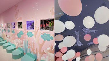 澎湖花火節必拍新景點!「粉紅小丑魚水族館」免門票親近20多種海洋生物 - 玩咖Playing - 自由電子報