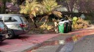 Orange County Residents Wash Retardant Off Homes Following Bond Fire