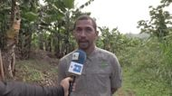 Atleta boricua José Meléndez cambia las zapatillas por el machete y la tierra