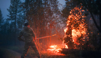 Volunteers pitch in to fight Russia's raging forest fires