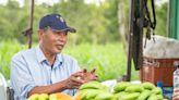 家樂福的「蕉」傲 挺友善農作一同守護石虎 良性循環吃得更安心 | 蕃新聞